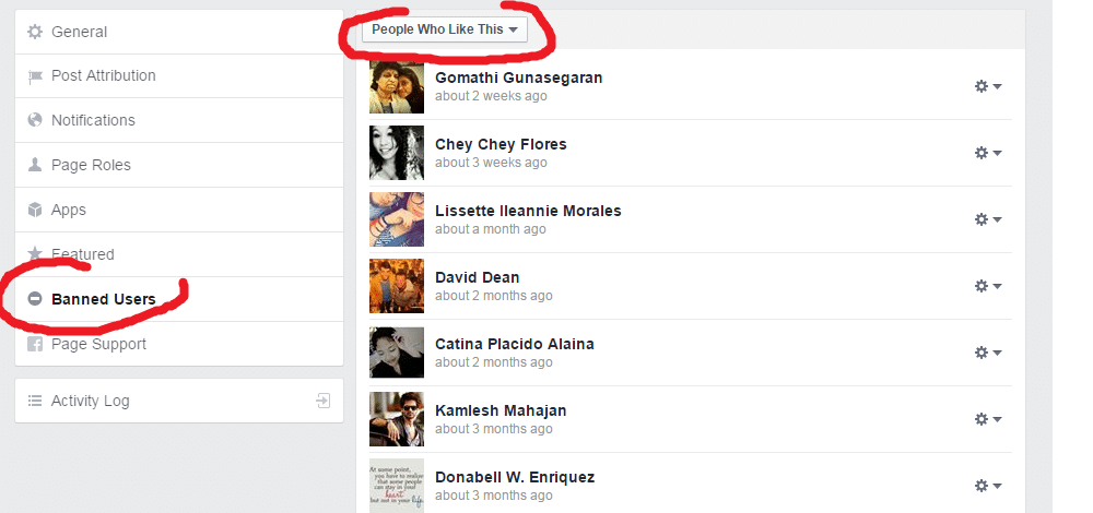 how to see people who like your page